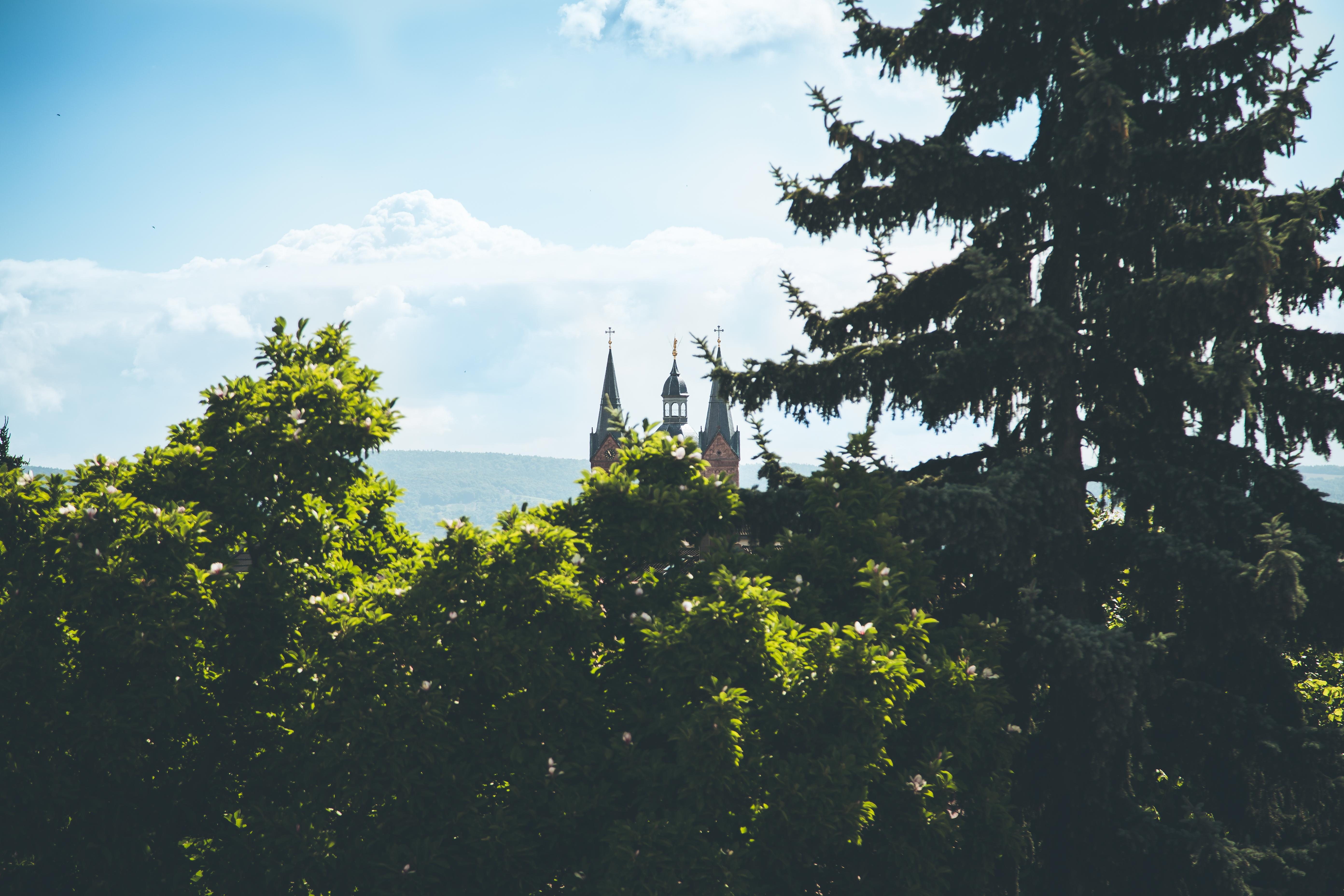 Ausblick auf die Basilika
