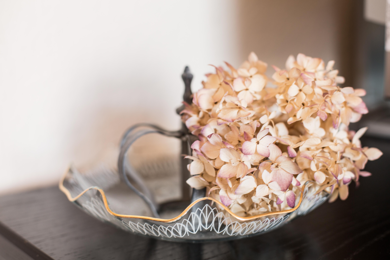 Krone-und-Trockenblume