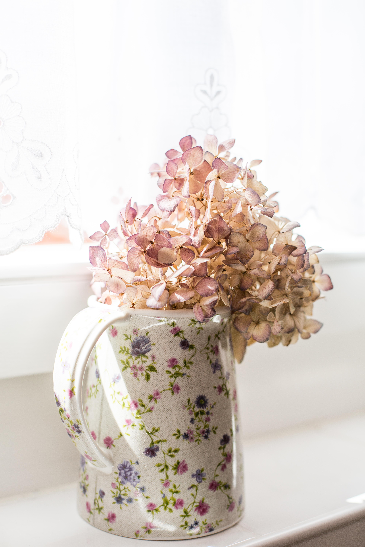 Trockenblume-in-Vase